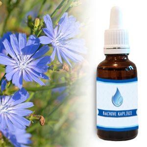 naravne bachove cvetne kapljice modrinka