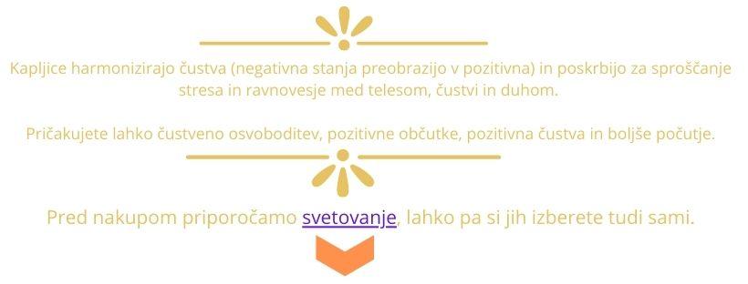 negativna čustva v pozitivna